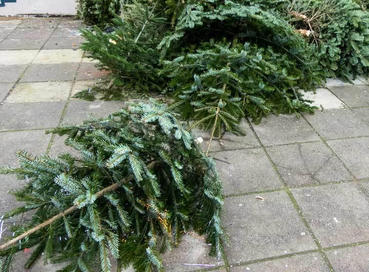 Weihnachten Ist.Weihnachten Ist Noch Nicht Vorbei