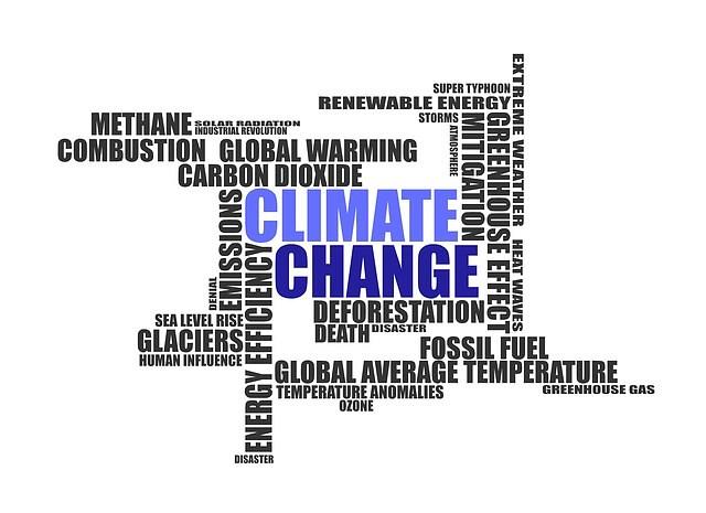Vatikan Und österreich Mahnen Weltklimagipfel Zum Handeln