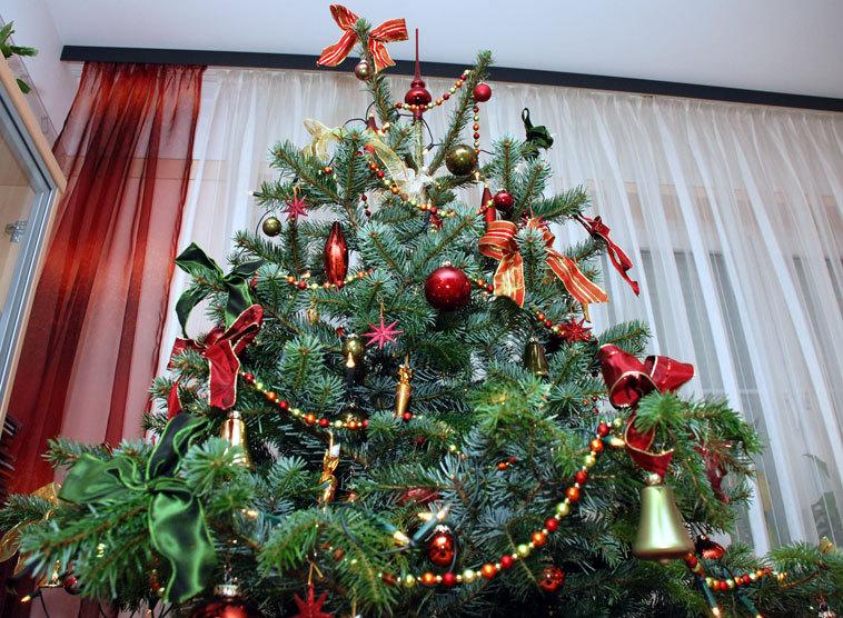 Weihnachtsbilder Italienisch.Oh Tannenbaum Oh Tannenbaum